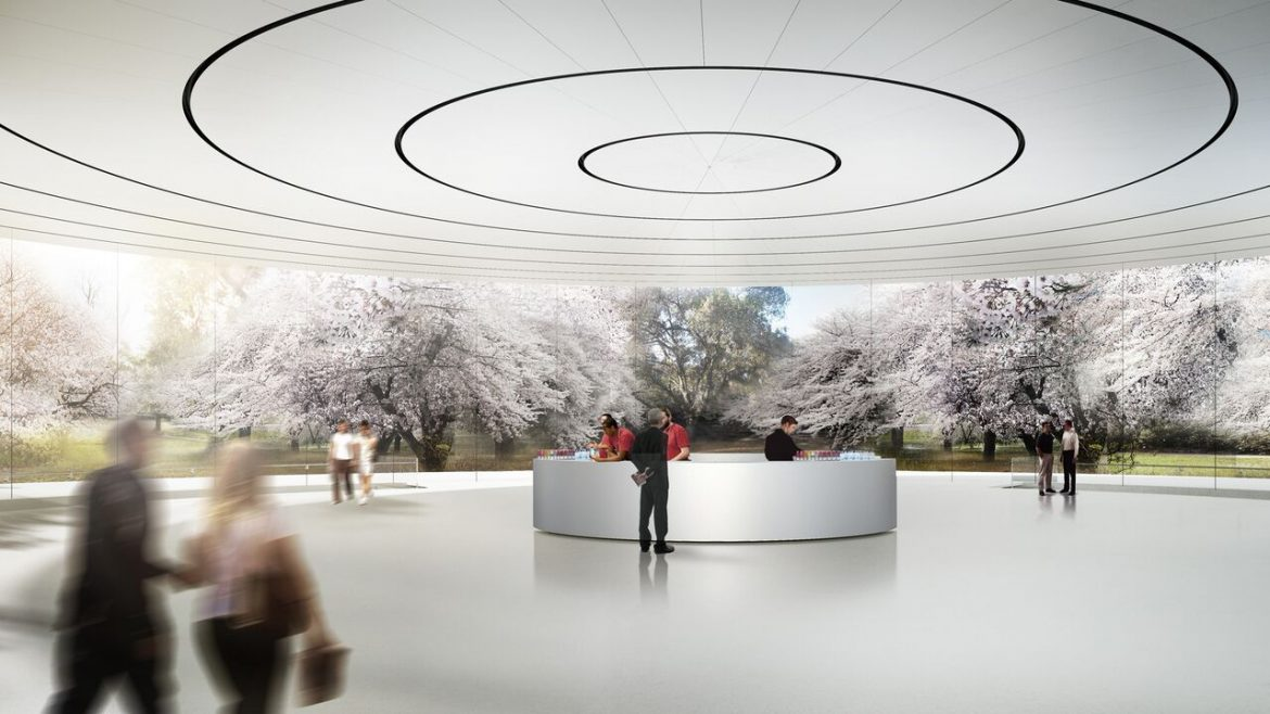 tetaro-apple-campus5